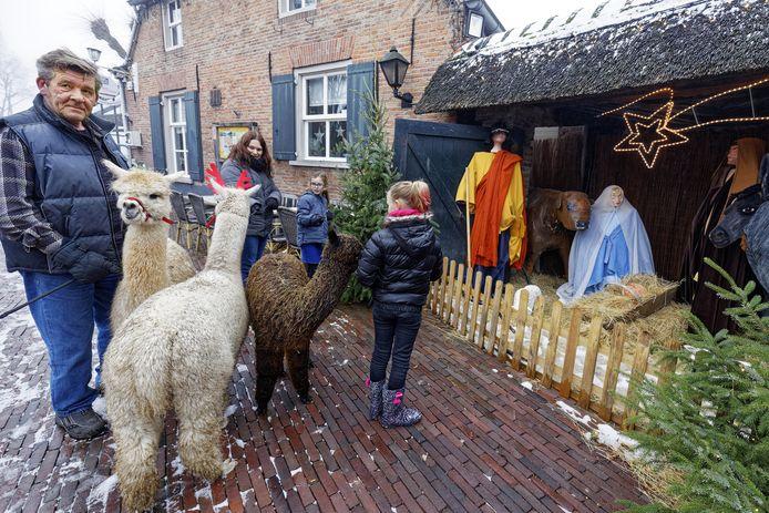 De Kribkesroute in Liempde met alpaca's erbij.