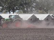 Brabant is coulant voor boeren die ineens een 'stikstof-vergunning' moeten hebben