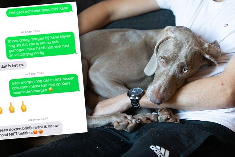 B.H. kreeg twee weken ziekteverlof om voor zijn puppy te zorgen.