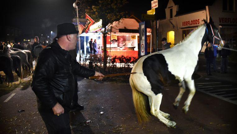 Paardenfeesten: vreugde of mishandeling? Beeld Marcel van den Bergh