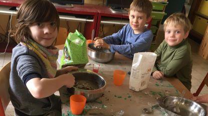 Wollewei op de bres voor de vogels: nestkastjes knutselen en voederbollen maken