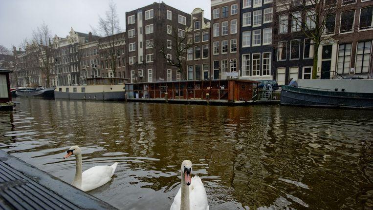 Inmiddels ligt in acht van 22 Amsterdamse wijken het aantal sociale huurwoningen van woningcorporaties onder de 35 procent Beeld anp