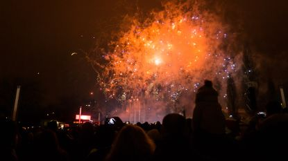 """Vlaanderen verbiedt vuurwerk: """"Dierenwelzijn gaat voor"""""""