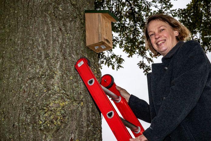 Marlinde is alvast begonnen met het ophangen van de eerste reeks vogelnestkastjes in het Deventer buitengebied.