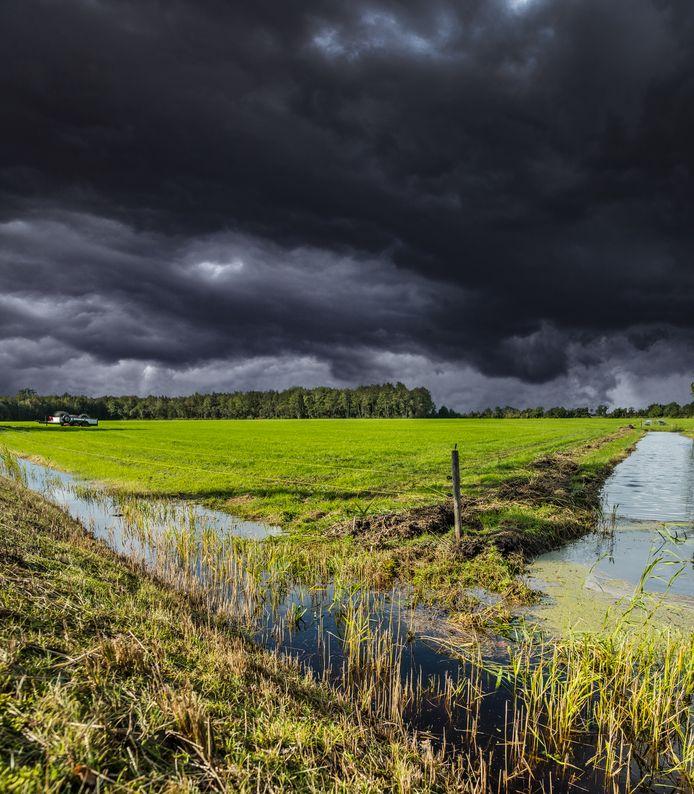 De begroeiing in sloten moet onderhouden worden, zodat het water goed kan blijven doorstromen. Het waterschap controleert nu via satellietbeelden of dat goed gebeurt. (archiefbeeld)