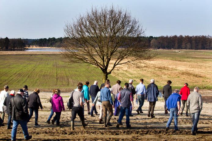De veldexcursie donderdag op de Landschotse heide.