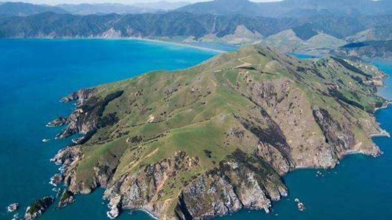 Pepin Island voor de kust van het Zuidereiland van Nieuw-Zeeland.
