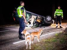 Auto over de kop in Bosch en Duin: hondjes ongedeerd, bestuurster gewond
