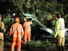 Gemist? Storm zorgt voor flink wat omgevallen bomen en Jorina verlaat Transvaal