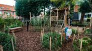 Edegem opent al twaalfde nieuwe speeltuin in zes jaar