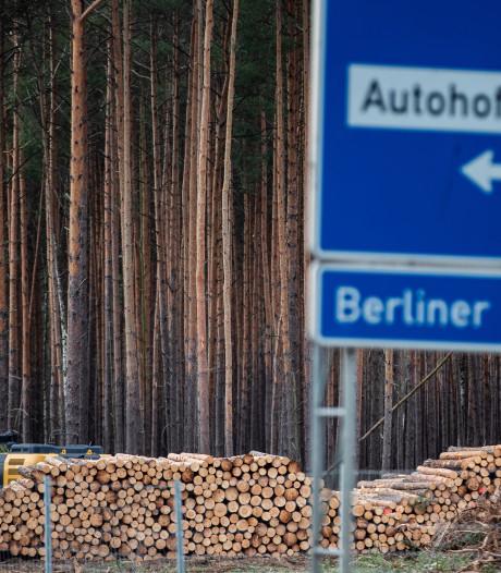 Milieuactivisten bezetten bos waar Tesla fabriek wil bouwen