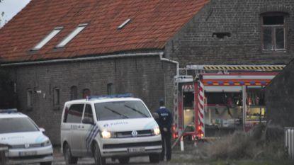 5 varkens sterven in brand, honderden gered dankzij snelle tussenkomst brandweer