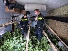 Voor 1,6 miljoen euro aan marihuana in beslag genomen bij woninginval in Enschede