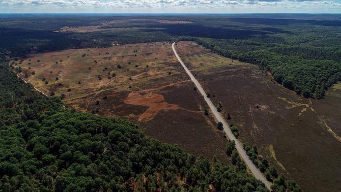 Een deel van de Veluwe uit de lucht. Foto ter illustratie.