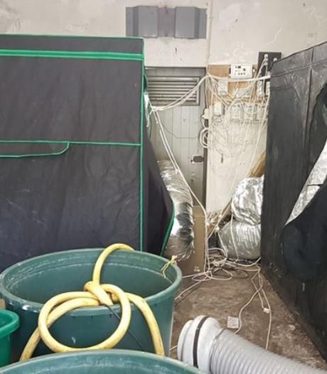 Wietkwekerij in transformatorhuisje Kaatsheuvel 'levensgevaarlijk'