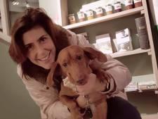 Vrijwilligers zoeken in Ommen massaal mee naar vermiste hond van Haagse toeristen: 'Waren bang dat Kenza het niet zou overleven'