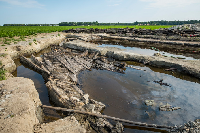 De opgravingen van een zestiende eeuws schip zijn deze week gestaakt.