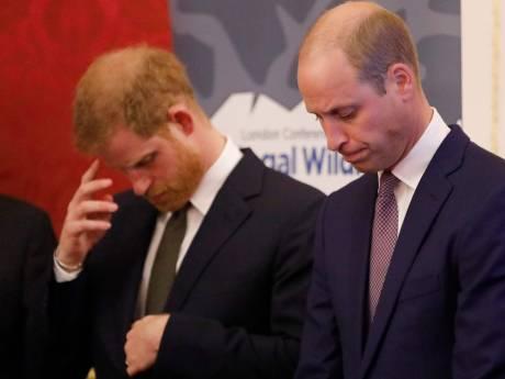 Barstjes in de bloedband: Diana smeekte zoons op elkaar te letten