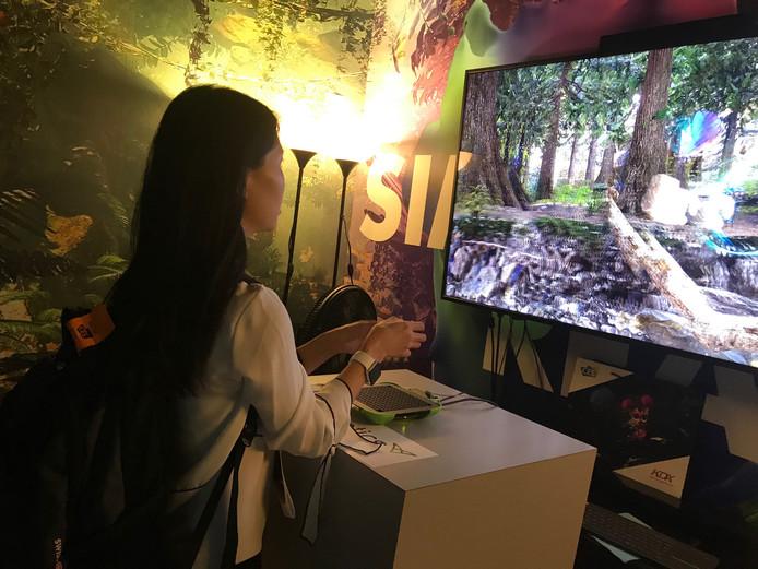 Dimenco laat bezoekers van de Consumer Electronics Show in Las Vegas kennismaken met Simulated Reality: insecten zijn voelbaar tijdens een ontdekkingstocht door de jungle.