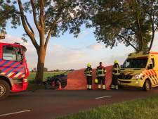 Man (44) overleden na botsing tegen boom bij Hedel