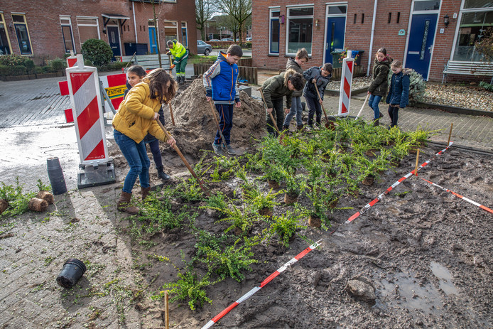 Aan de slag in Zwolle-Zuid.