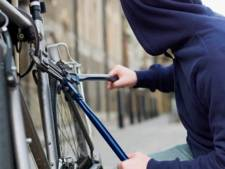 Celstraf voor Poolse fietsendieven fors lager dan de eis