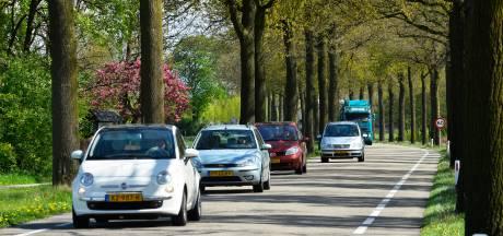 'Stop bomenkap langs wegen', pleit BMF in een dringende oproep aan de provincie