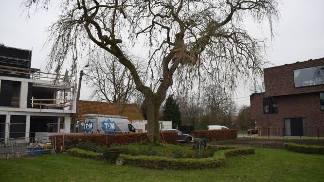 Tuin dorpshuis Bass'Cul wordt groene belevingsplek