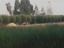 Zand van Afferdense huttenbouw gestolen met 'twee rode tractoren'