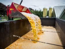 Milieucriminelen komen te makkelijk weg, zegt OM: 'Duizenden euro's boete stelt niks voor'