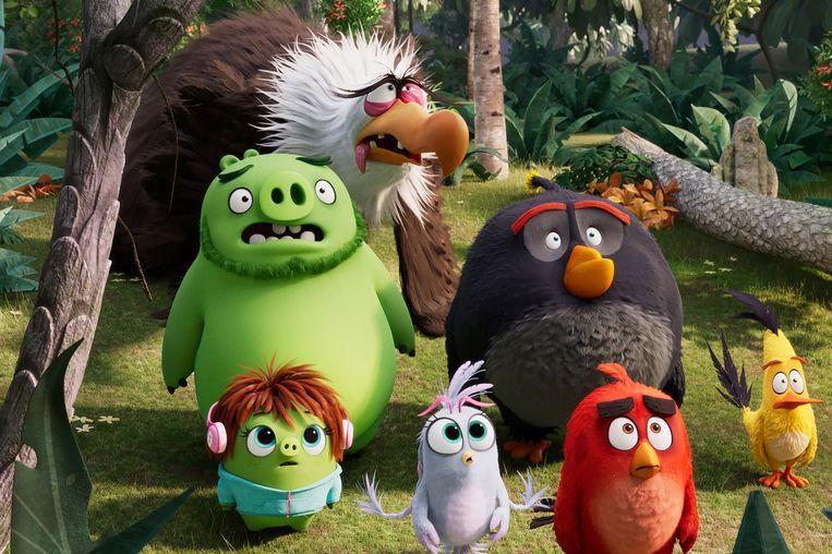 De  Angry Birds  Beeld *
