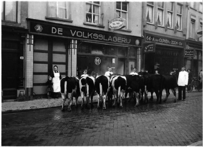 De Ginnekenstraat in de jaren '50,  koeien staan bij De Volksslagerij klaar voor de slacht.