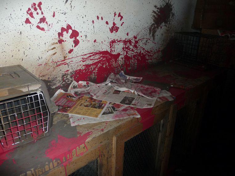 De flits van een fototoestel maakte dit beeld mogelijk, want in de horrorhuizen is het helemaal donker.