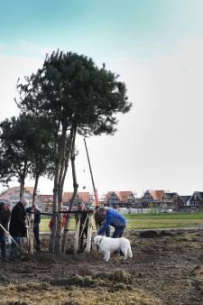 Heerlijckheid Land van Cuijk met 1000 bomen: 'Het park is een gebaar van ons aan de regio'