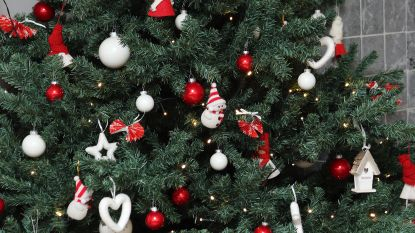 Kerstbomen worden opgehaald op 9 en 10 januari