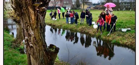 Waterkwaliteit in sloten, plassen en vennen zorgelijk, blijkt uit groot burgeronderzoek