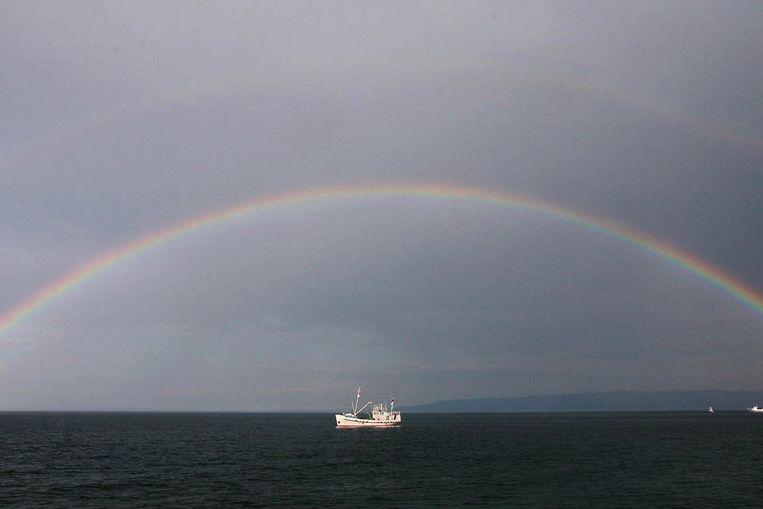 Het Russische Baikalmeer (AFP) Beeld AFP