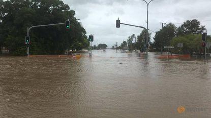 Krokodillen vullen de straten van overstroomde gebieden Queensland
