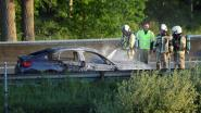 BMW brandt uit op E313