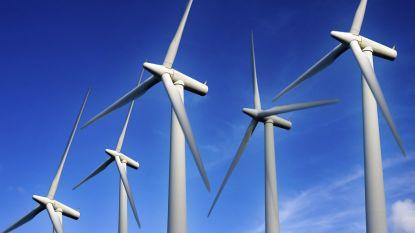 Geen windturbines langs Patentestraat in Lissewege