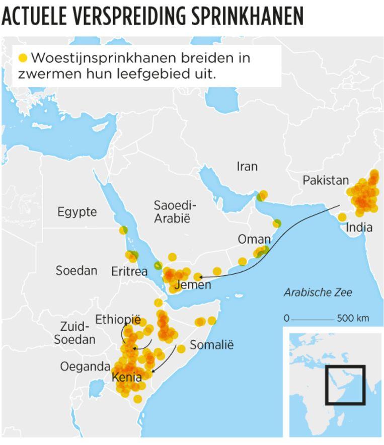 null Beeld Volkskrant Infographic