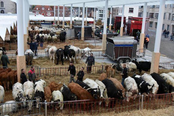 De dieren staan voortaan onder de grootste overdekte markthal van Europa.