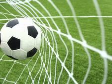 Storm vernielt ballenvanger op sportpark Genemuiden