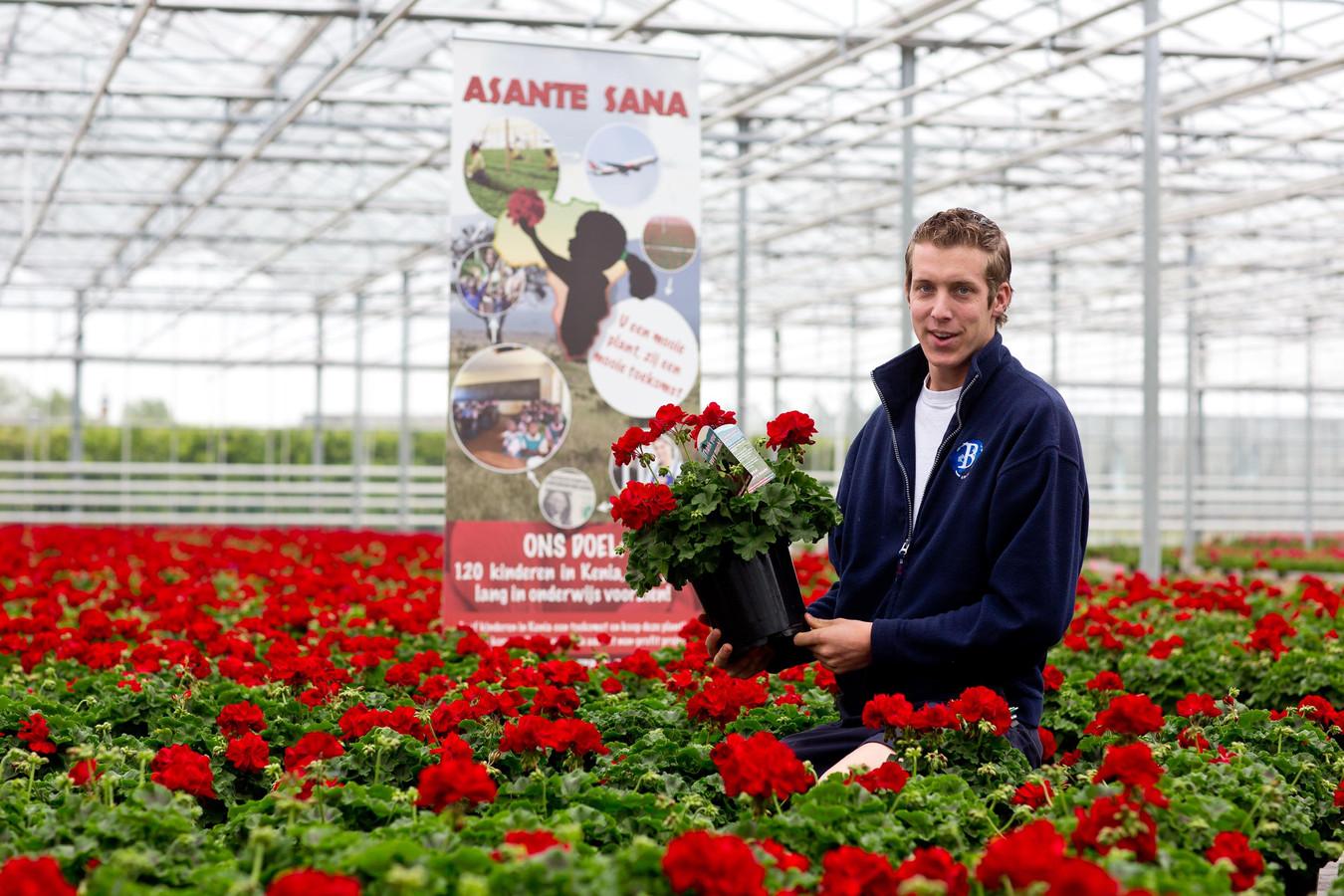 Walter van den Berg tussen de geraniums, die worden verkocht voor het goede doel Asante Sana.