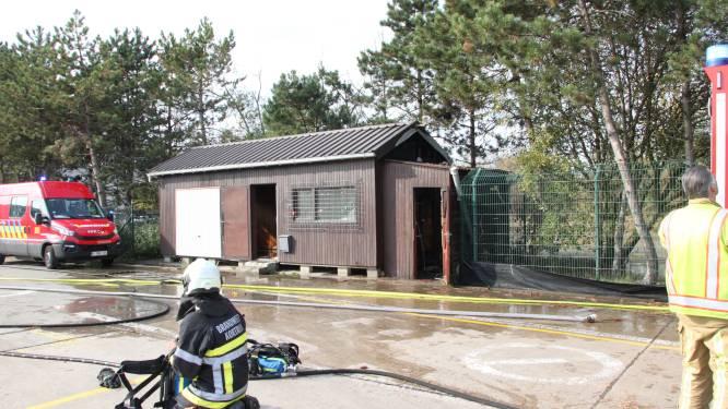 Houten barak vat vuur op voormalig containerpark in Kortrijk