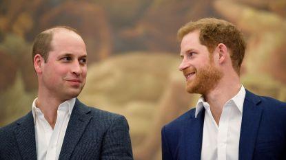 """""""William en Harry beëindigen vete van 2 jaar tijdens geheim gesprek"""""""