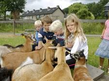 Gemeente Geertruidenberg koopt kinderboerderij: 'Wij staan hier welwillend tegenover'