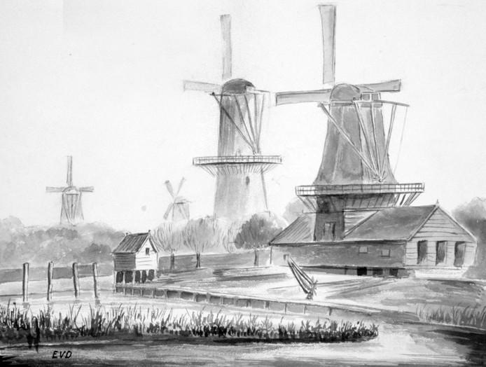 Van de Zwaan in Dordrecht zijn nauwelijks afbeeldingen. Op deze tekening, naar een foto uit ca. 1880, v.l.n.r. de Noordendijk- en Lijnbaanmolens de Eendracht, de Zwaan, het Fortuin en Kijck over den Dijck.
