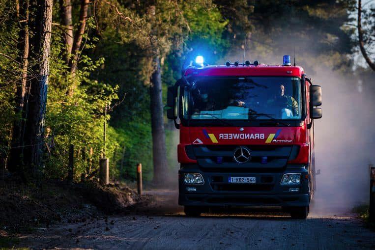 De brandweer moest ook bosbrandweerwagens uit Diest en Overijse inzetten.