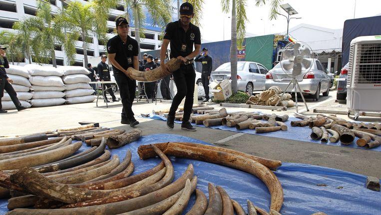 De Thaise politie toont de in beslag genomen slagtanden Beeld epa